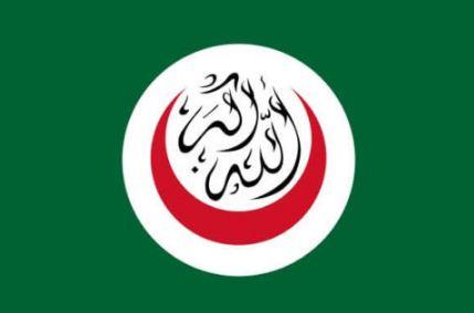 Bendera OKI