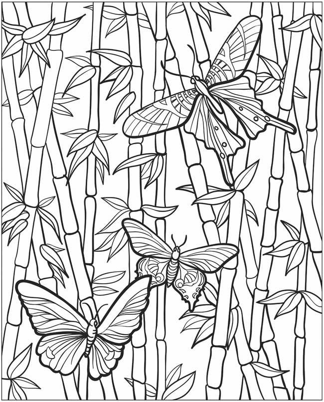 EXPOSE HOMELESSNESS: COLORING BOOK BUTTERFLY (2) FOR OUR