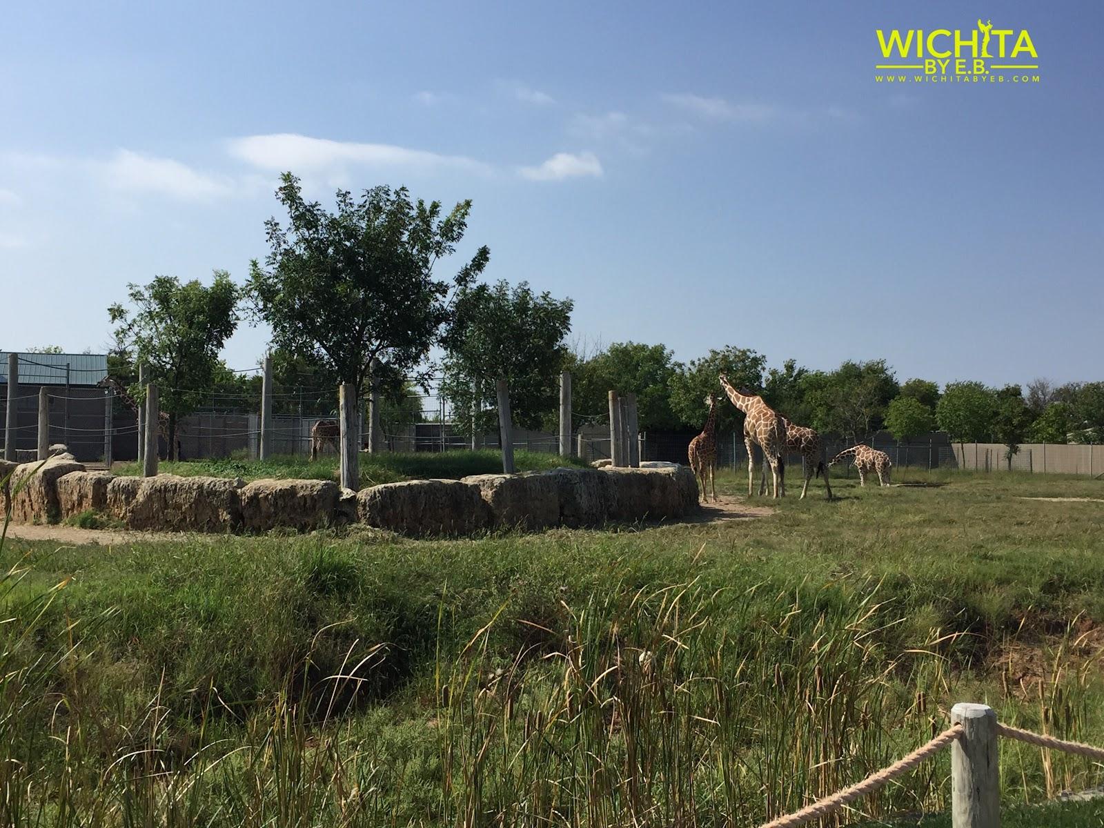 Tanganyika Wildlife Park – Wichita By E B