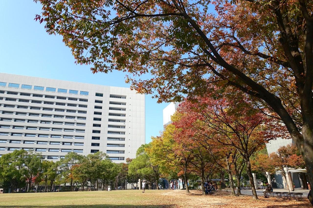 と天神中央公園(Tenjin Central Park)