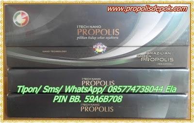 propolis termurah original