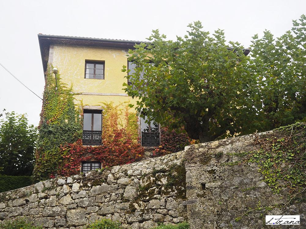 Ceceda, casas de la zona