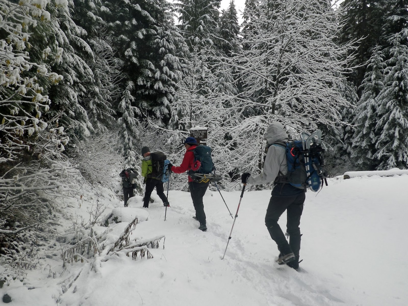 3 Great Winter Hikes in and Around Gatlinburg |Hiking Snow
