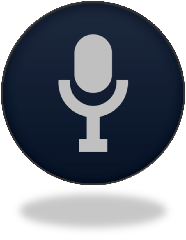 How to Add Voice Searc...