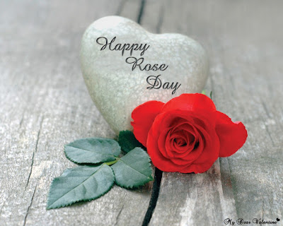 Happy Rose Day Profile Pic for Whatsapp