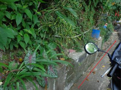 Tata Kota dan Infrastruktur Pulau Penang