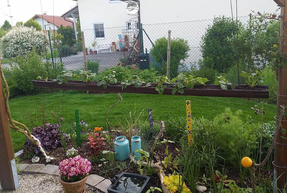 b ntchen erdbeeren in der regenrinne. Black Bedroom Furniture Sets. Home Design Ideas