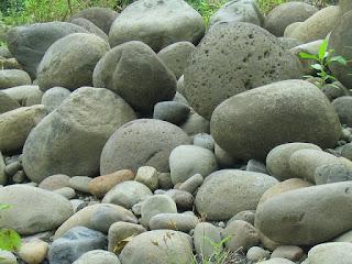 tanah, komponen abiotik