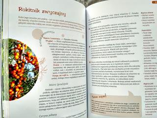 Przykładowe strony z informacjami o roślinie