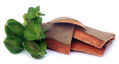 Benefits of Terminalia Arjuna