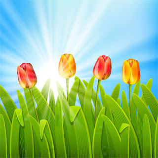 Tulips in Grass Against Sunlight in a Blue Sky