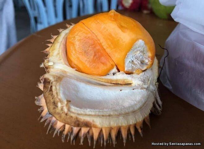 4 Jenis Buah Unik Yang Hanya Terdapat di Sabah Dan Sarawak
