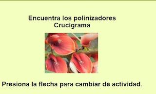 http://capitaneducacion.blogspot.com.es/2017/11/3-primaria-ciencias-de-la-naturaleza_92.html