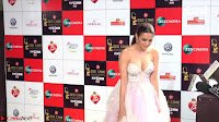 Surveen Chawla at Zee Cine Awards 2017 ~  Exclusive Galleries 014.jpeg
