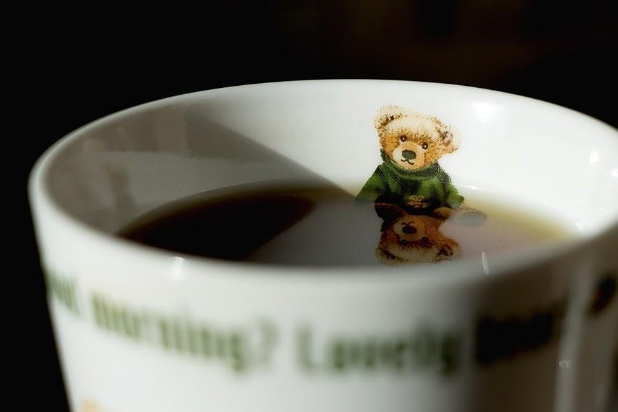 Urso e xícara