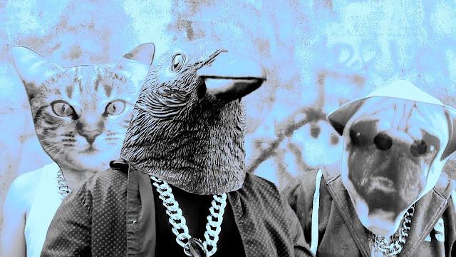 David King - Crazy Crow