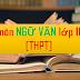 Sáng kiến kinh nghiệm môn Ngữ văn cấp THPT (SKKN môn Ngữ văn lớp 10, 11, 12)