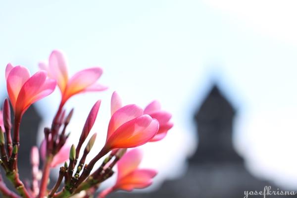 Candi Barong Prambanan