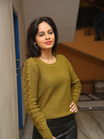 Nandita swetha photos from Janaki Ramudu audio-cover-photo