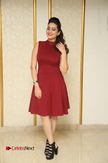 Telugu Tollywood Anchor Manjusha Pos in Red Short Dress  0161.JPG