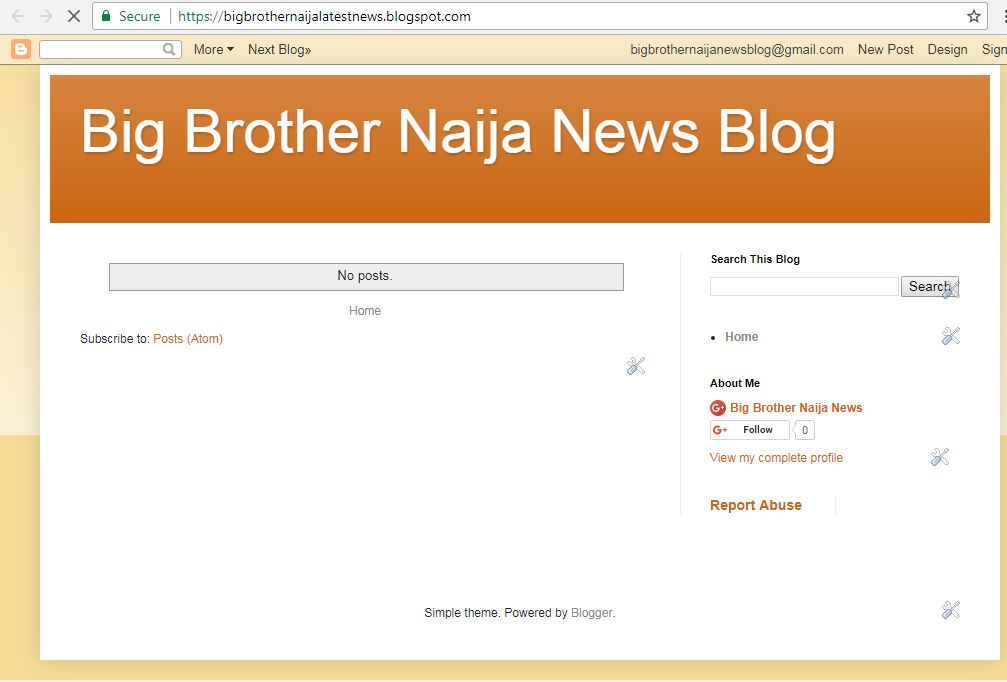 How To Start A Big Brother Naija News Blog And Make Money Online