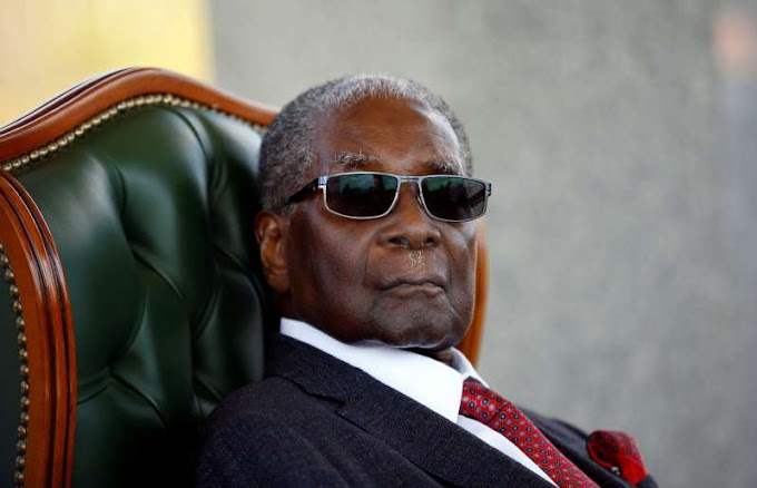 Suitcase full of cash stolen from Mugabe, court hears