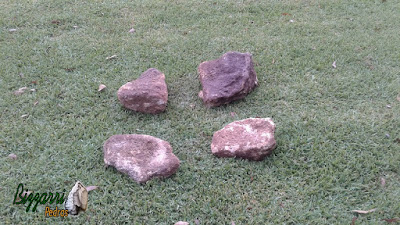 Pedras ornamentais, tipo pedra moledo bege escuro, sendo pedra tipo chapa com tamanho variado de 20 x 20 cm e espessura de 10 a 15 cm.