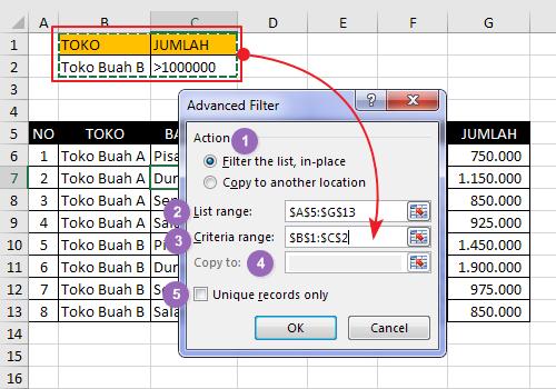 Langkah Menggunakan Advanced Filter Pada Excel 4