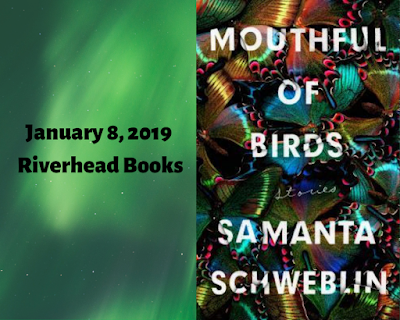 Samanta Schweblin, Megan McDowell, Mouthful of Birds, InToriLex
