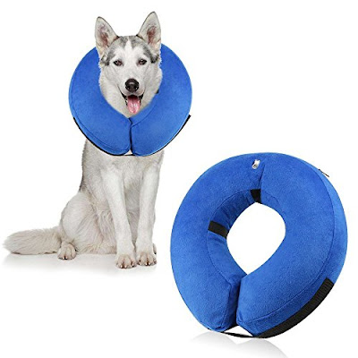 Inflatable Recovery Collar for Pet Dogs