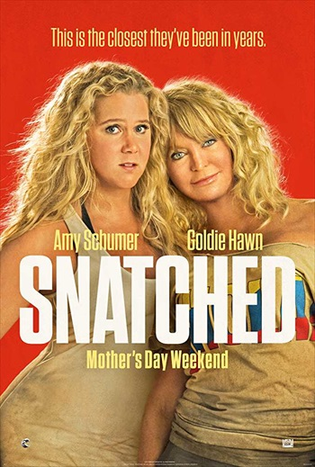 Snatched 2017 Dual Audio ORG Hindi Full Movie Download