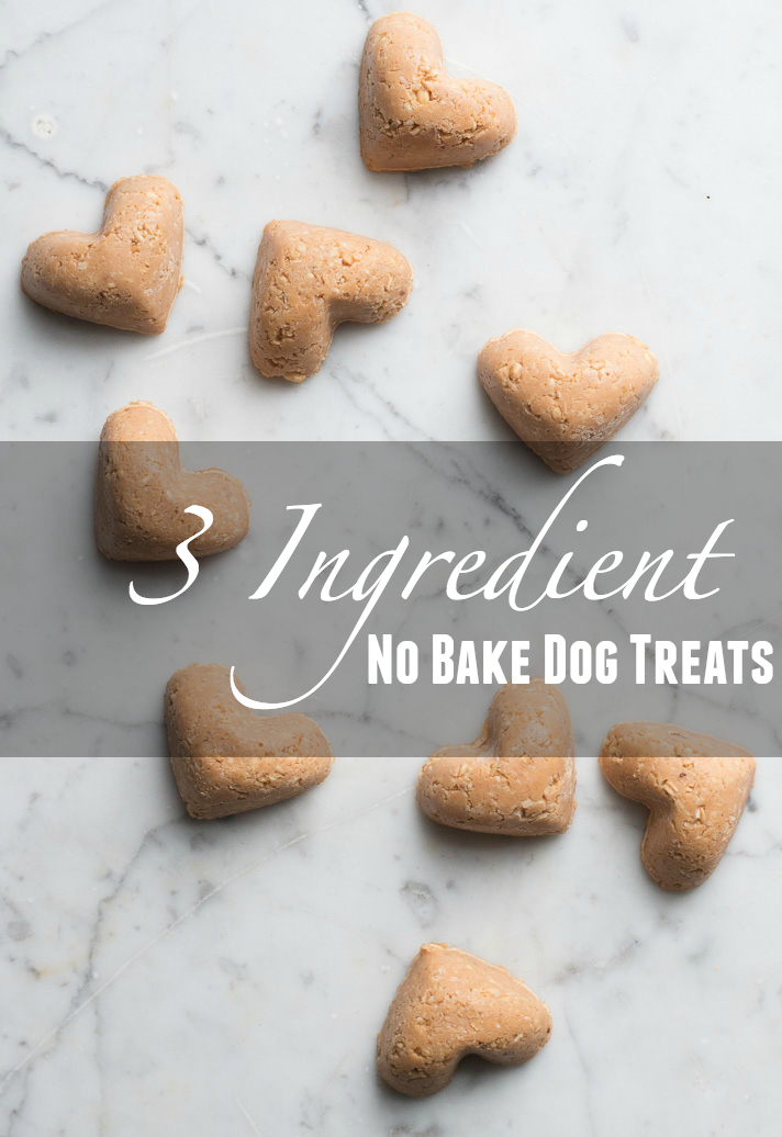 Thanks for checking in on us today — we'd love to hear from you in the comments section below if you give these no-bake dog treats a try, if you have ideas ...