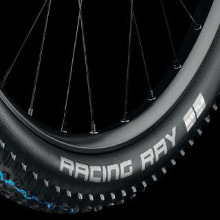 pneu schwalbe racing ray