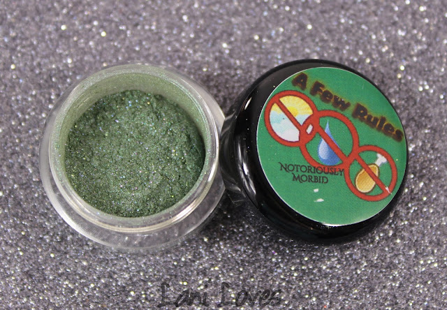 Notoriously Morbid The Creatures Eyeshadow Swatches & Review