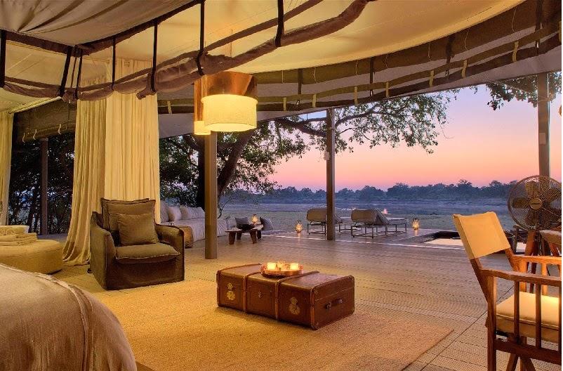 Safari Style Elegantly Simplistic 11