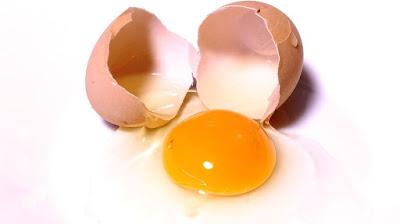 efek kelebihan protein, gizi, kelebihan protein, manfaat protein, nutrisi, protein, protein lengkap, protein tidak lengkap,