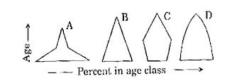 ALL EXAM QUESTION PAPERS: June 2011