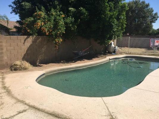 Backyard Landscaping Project: Progress Report