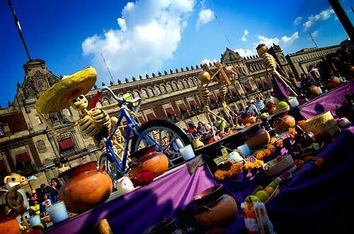 EL TRASHUMANTE DE LA NOCHE (Andrea cautiva a campesinos tricolores).