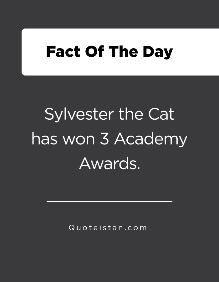Sylvester the Cat has won 3 Academy Awards.