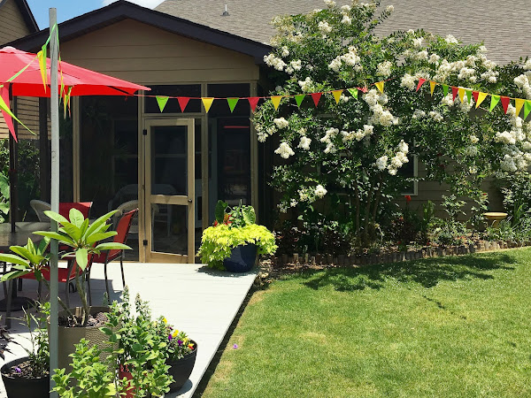 Our Garden Transformation