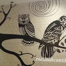 Dr.Owl Coffee Shop Medan