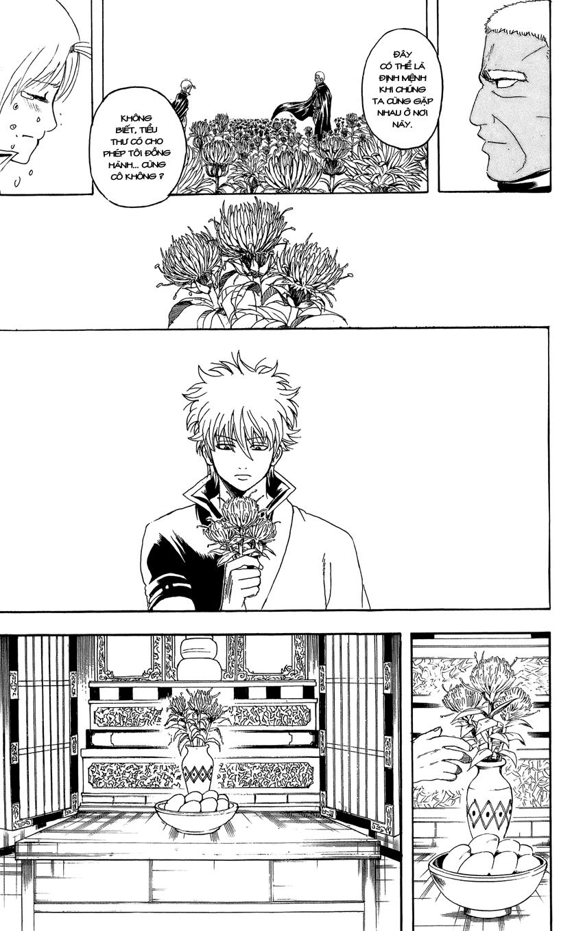 Gintama Chap 309 page 24 - Truyentranhaz.net