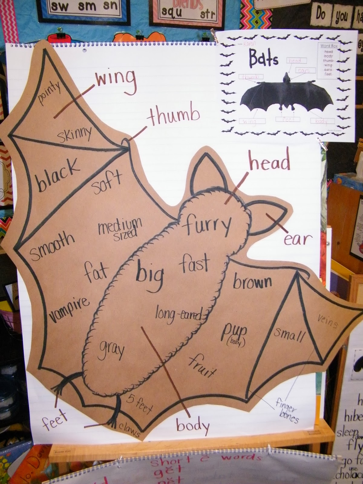 Adventures With Firsties Bats Spiders And Ghosts