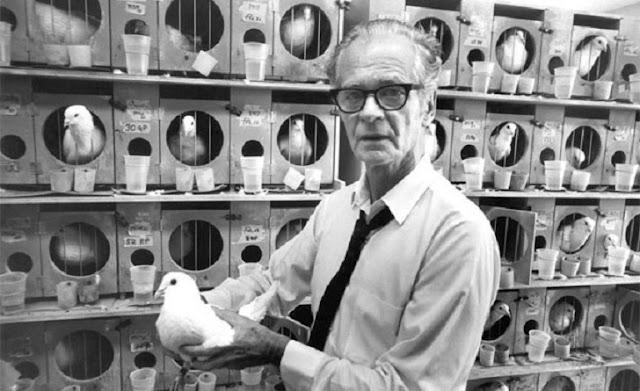 B. F. Skinner 與它的鴿子們