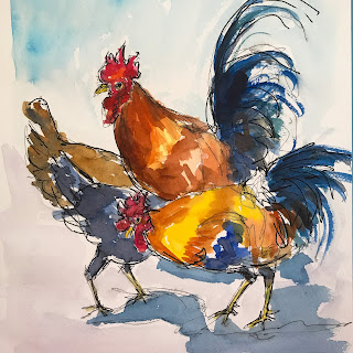 chickens, roosters, Key West chickens, Key West roosters, watercolor