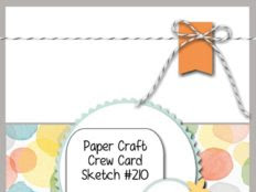 Paper Craft Crew Challenge #210