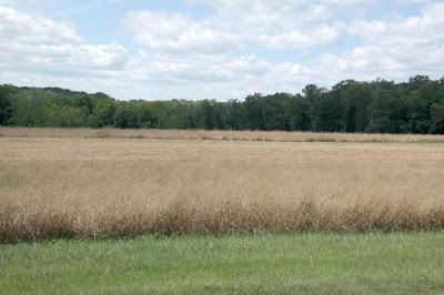 Touring the Civil War Monuments on McPherson Ridge - Gettysburg Battlefield