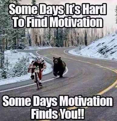 How to find your motivation - Or let it find you - Funny pics