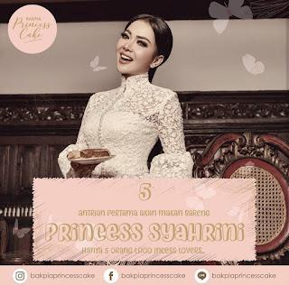 bakpia-princess-cake-syahrini
